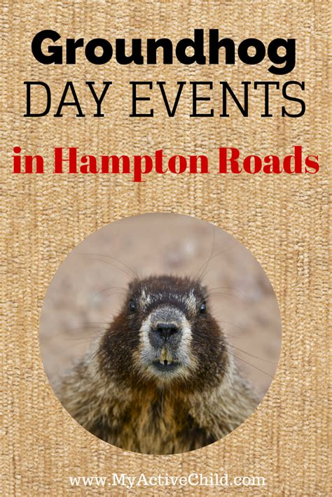 groundhog day events groundhog day events in hton roads my active child