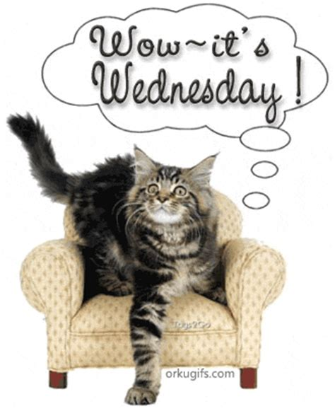 wow  wednesday images  messages