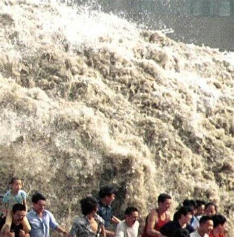 earthquake denpasar bali bollocks bali tsunami nearly