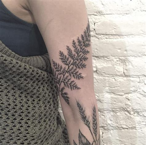 unborn design instagram best 25 fern tattoo ideas on pinterest nature tattoos