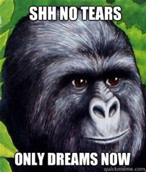 Gorilla Munch Meme - shh no tears only dreams now gorilla munch quickmeme