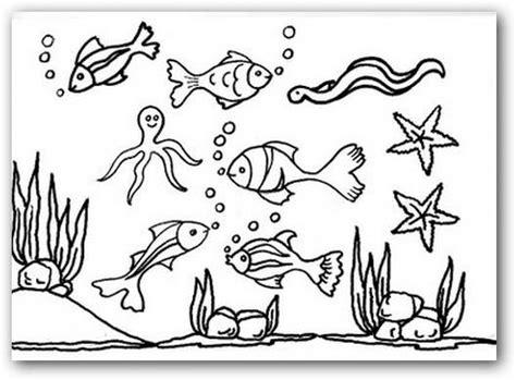 imagenes para colorear del otoño dibujos para colorear los animales del mar dibujos para