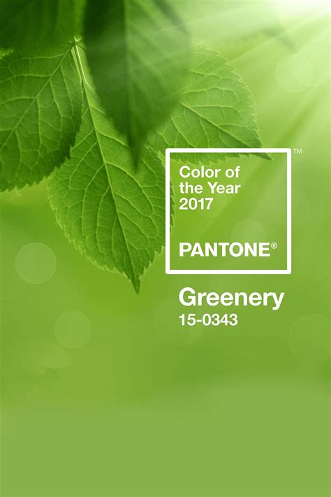 pantone of the year 2017 pantone color of the year 2017 carrie loves