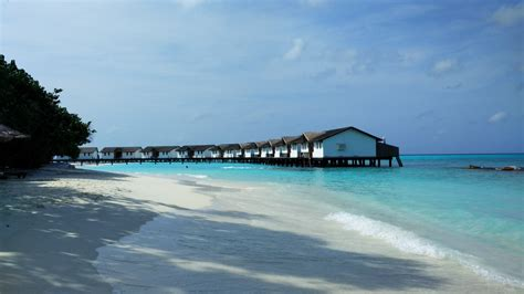 dive resorts scuba diving in maldives ultimate guide budget maldives