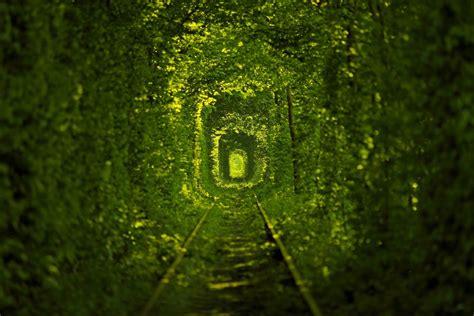 images of love nature tunnel of love nature tram tracks ukraine hd wallpaper