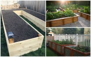 Best Wood For Raised Garden Beds - diy your way to a beautiful raised garden bed diy cozy home