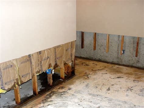 Removing Mold From Drywall Ceiling by 13 Easy Diy Ways On How To Remove Household Mold Problems Remodeling Expense