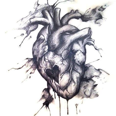 31 best bleeding heart vine tattoo designs images on