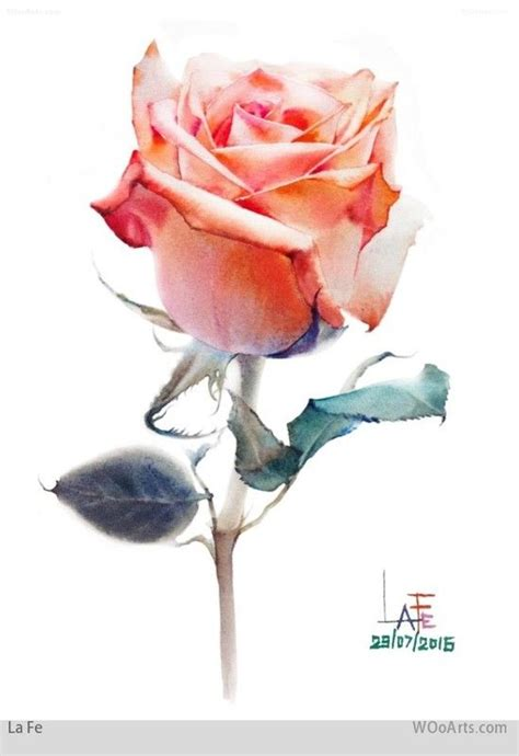 the 25 best ideas about watercolor rose on pinterest