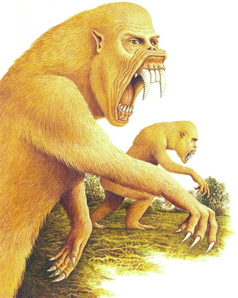 new year animals future the horrors of evolution the 10 freakiest animals of