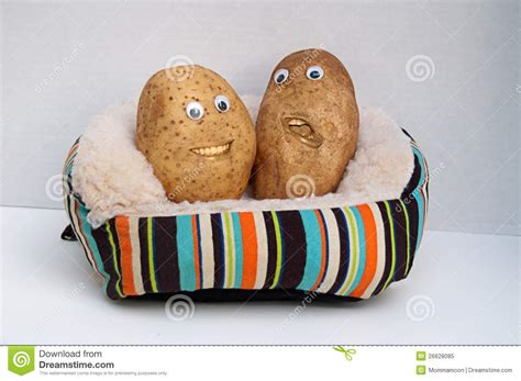 red couch potatoes two happy couch potatoes royalty free stock photo image