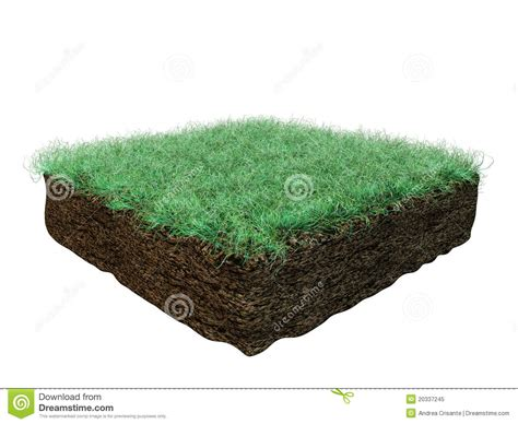 soil section soil section royalty free stock photo image 20337245