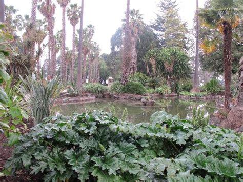 Williamstown Botanic Gardens Williamstown Botanic Gardens 윌리엄스타운 Williamstown Botanic Gardens의 리뷰 트립어드바이저