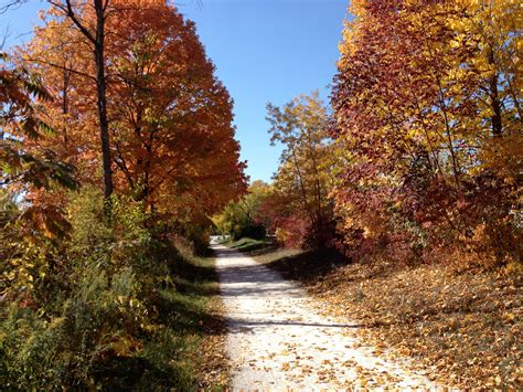 fall bike path  stock photo public domain pictures