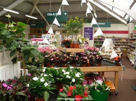 wyevale garden centre  beaconsfield reviewed