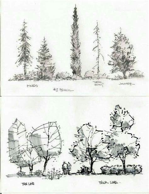 sketchbook landscape 1000 images about alberi tree on sketching