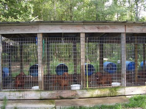 homemade outdoor dog kennels ideas for the house best 25 dog pen ideas on pinterest mud rooms pet pen