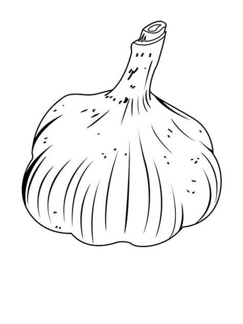 coloring for garlic coloring pages and print garlic coloring