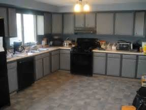 Kitchens With Black Cabinets Pictures kitchen with black appliances gray pictures cabinets color ideas