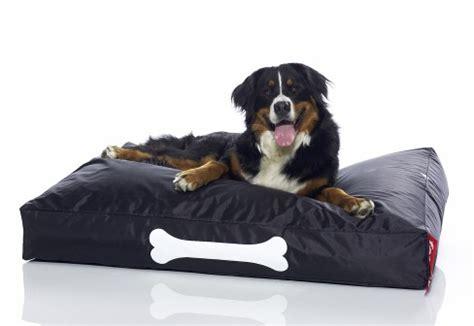 fatboy dog bed fatboy dog bed xyzoflife s blog