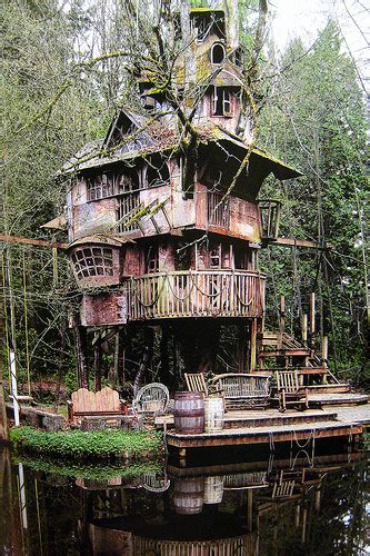 the house we live in i wish we could live in a tree house