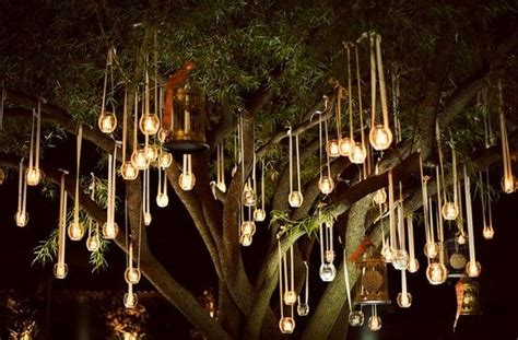 hanging tree lights garden pinterest