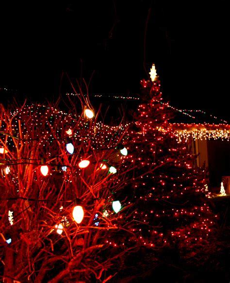 domain christmas tree lighting 2018 tree with lights lights decoration
