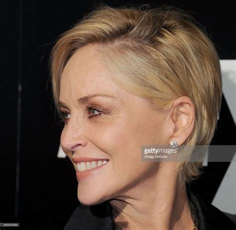 pictures for sharon stone hair shenion best 25 sharon stone hair ideas on pinterest sharon