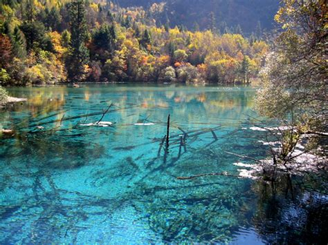 clearest lake in china facts crystalline turquoise lake jiuzhaigou national park china fresh travel destinations