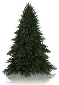 9 balsam hill 174 baby redwood artificial christmas tree unlit modern christmas trees by