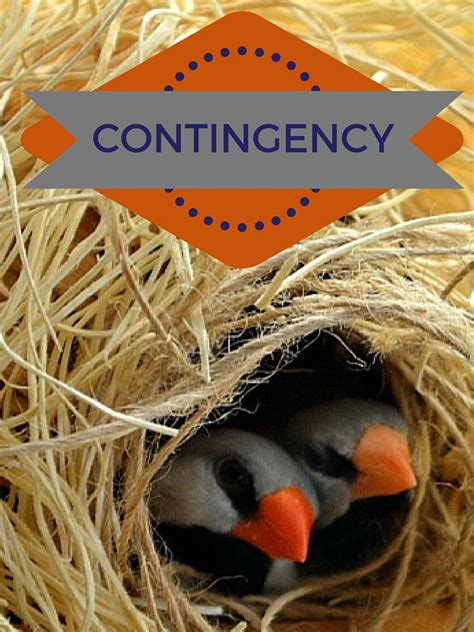 buying a house on contingency 5 strategies to know before buying a house colorado springs real estate