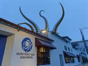 How To Bedroom Makeover Monterey Bay Aquarium Experience Monterey Bay California