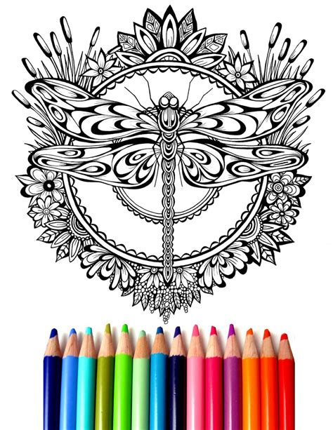 dragonfly mandala coloring pages dragonfly mandala coloring sheet coloring page