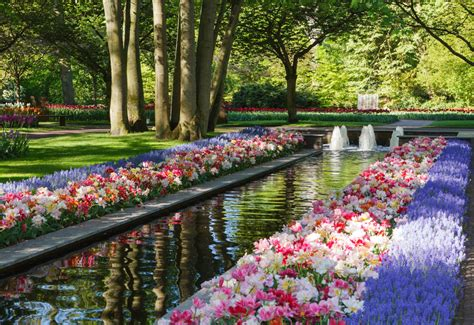 World Beautiful Flowers Garden The Most Beautiful Gardens In The World Keukenhof Garden In Amsterdam Gardens Tulips Garden