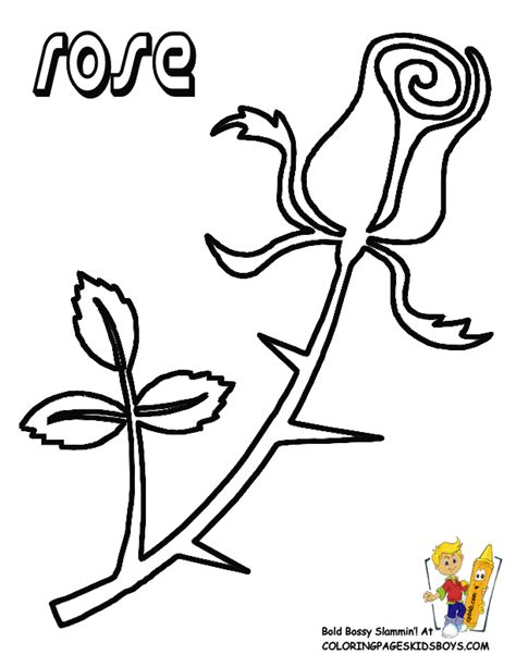 single flower coloring pages freecoloring4u com