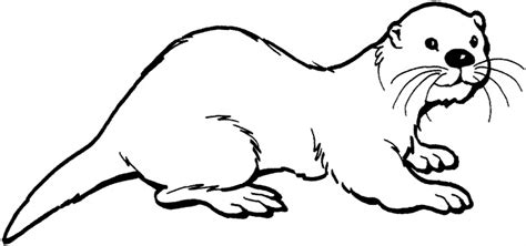 otter coloring pages preschool otter this website has all kinds of awesome coloring