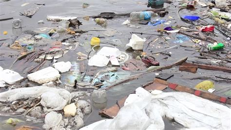 Plastic Bags Pollution Essay by Plastic Bag Pollution