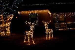 christmas light deer christmas decorating