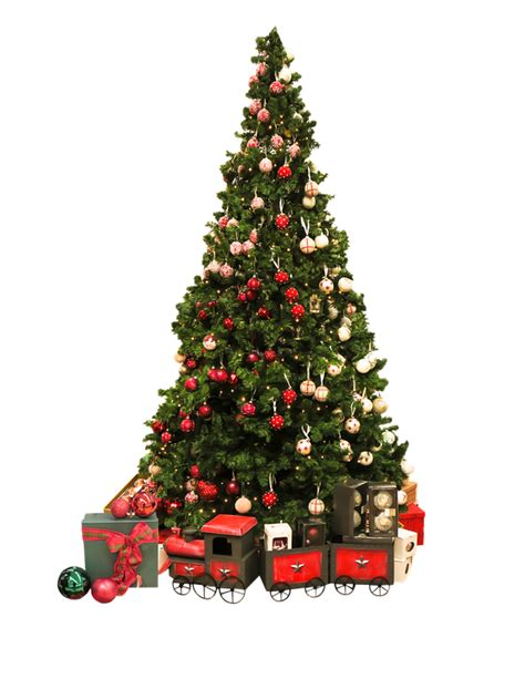 free photo christmas christmas tree free image on