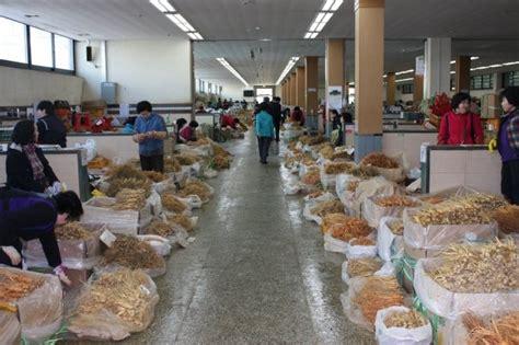 Ginseng Di Indonesia by Wisata Ginseng Di Negeri Ginseng Oleh Ony Jamhari