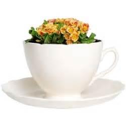thorsten elten plant cup white glazed earthenware