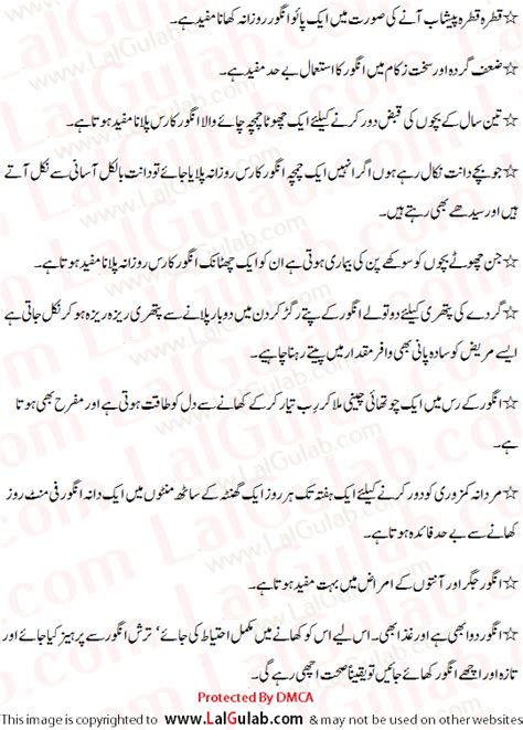 Urdu Essays Notes by Grapes Urdu Essay Angoor Urdu Essay Mazmoon Urdu Speech Notes Paragraph Essay Urdu Language
