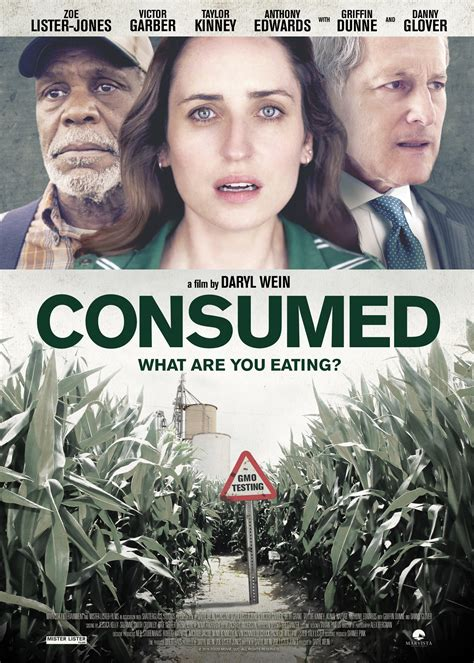 Modification On Netflix by Locally Made Consumed Now On Netflix Splog