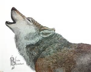 howling wolf drawing thelaststarlighter 169 2017 feb 9 2014
