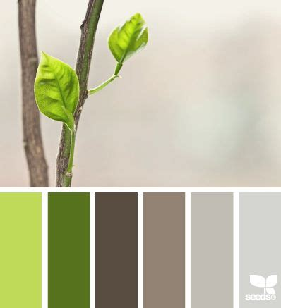 seeds color palette 17 best ideas about seeds color palettes on