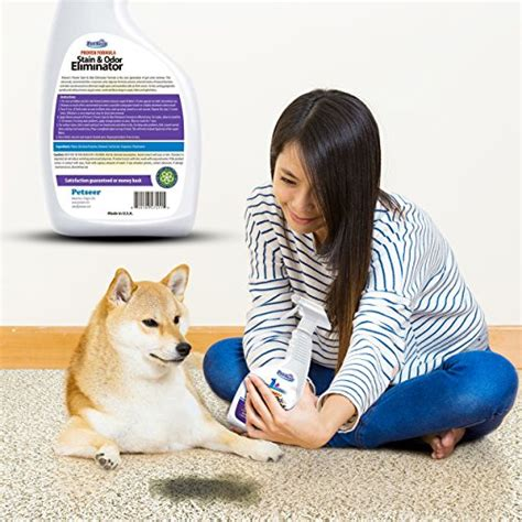 stop cat from peeing on couch petseer pet odor eliminator and stain remover stop cats