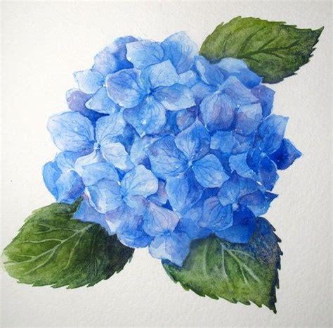 watercolor hydrangea tutorial 17 best images about watercolor hydrangeas on pinterest