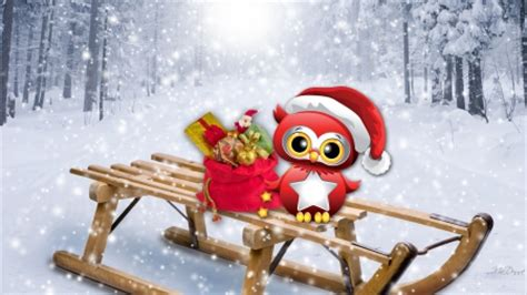 wallpaper christmas owl christmas owl winter nature background wallpapers on