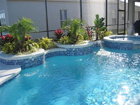 pool plants get domain pictures getdomainvids com