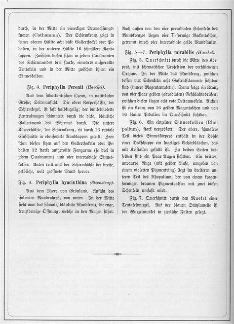 Ernst Haeckel: Kunstformen der Natur, Tafel 38